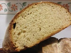 pane di grano duro (75% sfarinato di grano duro e 25% farro integrale) cotto a 240°C: particolare della mollica